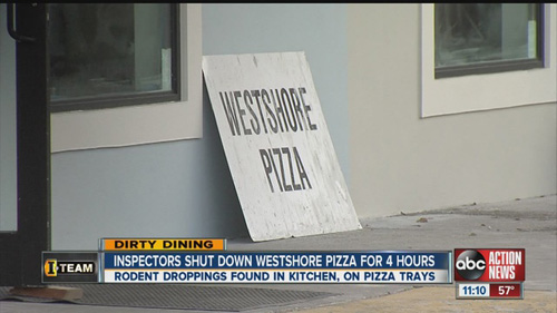 Dirty Dining 115 Rodent Droppings Temporarily Closes Popular Pizza Restaurant Pmq Pizza Magazine