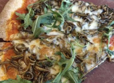 mealworms on pizza
