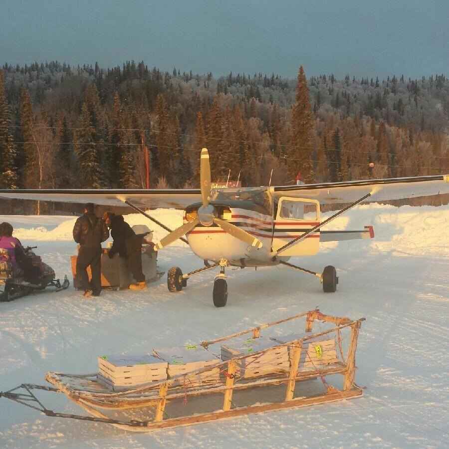 this photo shows a plane used to offer bush delivery by pizza in Alaska